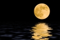 Lunární horoskop