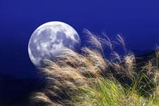 Měsíc v úplňku a jednotlivá znamení horoskopu